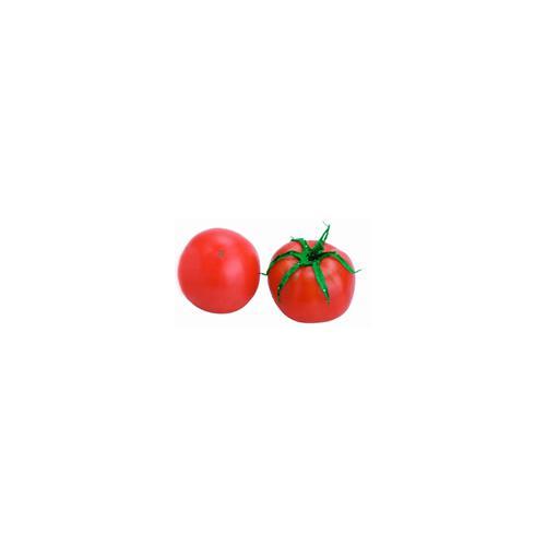 低温干燥番茄粉生产线设备